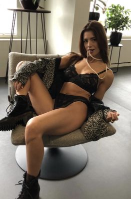 pavo couture lingerie amsterdam